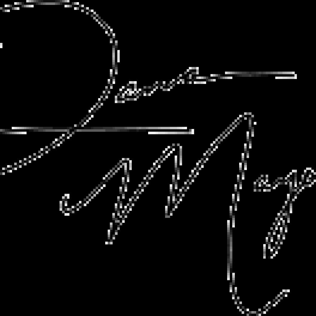 Dana Mayer's signature